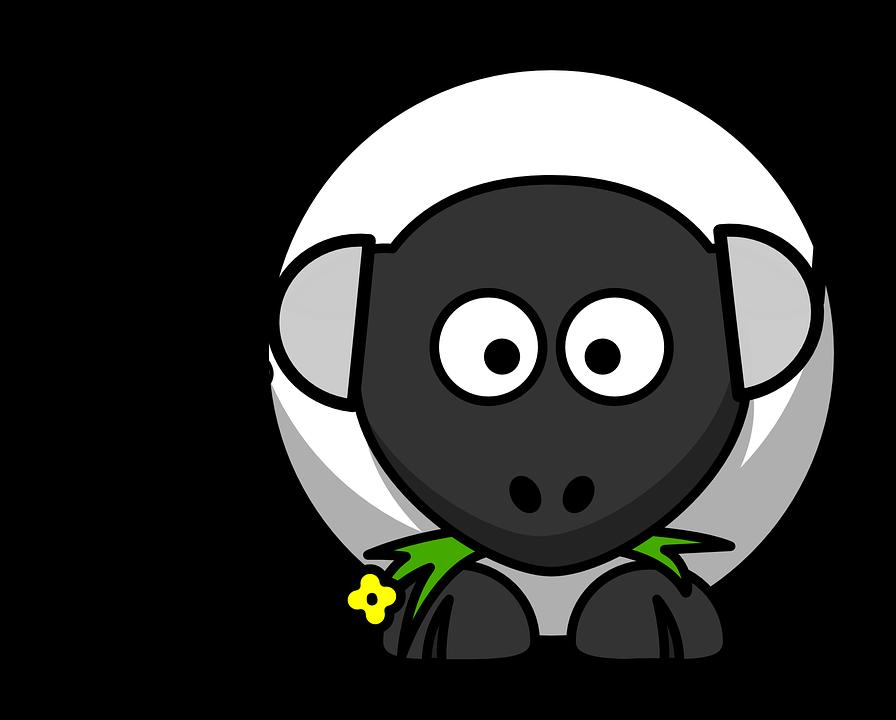 sheep-158247_960_720
